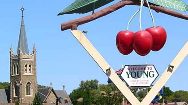 Eat, play, love it ... Young is host to all things cherry next month.