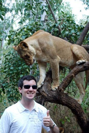 Top of the food chain ... the writer gets up close with one of the lions.