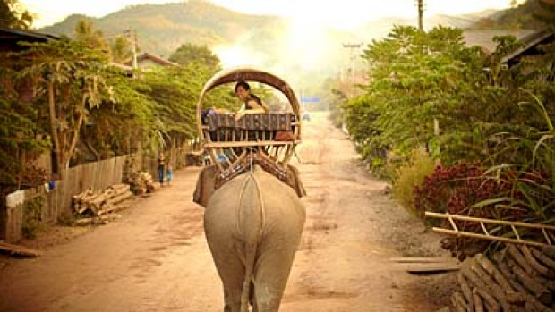 Slow and silent ... the elephant caravan arrives in the village of Ben Thene.