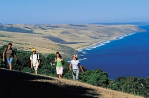Take a hike ... the 1200-kilometre Heysen Trail starts in the Deep Creek Conservation Park.
