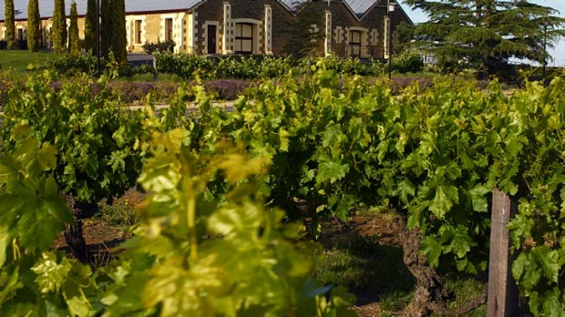 Wynns Coonawarra estate.