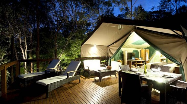 Tandara relax under the stars. & Tandara Luxury camping Lane Cove: Bush landscapes rich canvas
