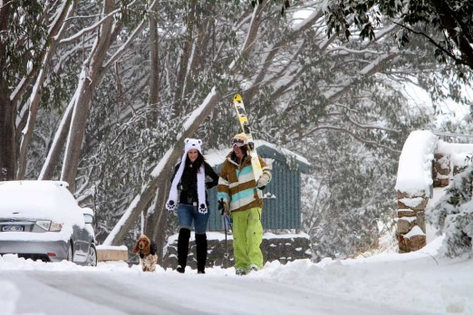 Falls Creek residents Sam Perry and Laura McCoombe with their Cockerspaniel 'Baxter' enjoy a stroll through the snow ...