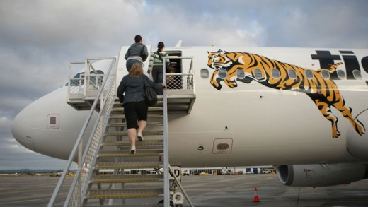 Tiger's Australian wing has been grounded by CASA while a safety probe continues.