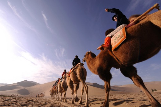 Silk Road camels cross the sands of the Gobi Desert. Photo: AFP/Peter Parks.