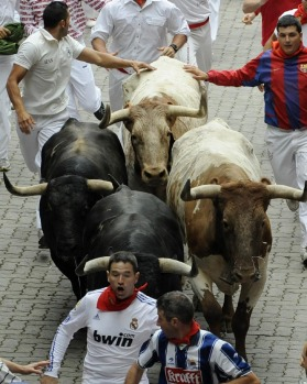 Runners sprint in front of Torrestrella fighting bulls at the entrance to the bullring.