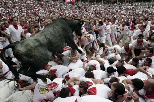 A calf, used as a game to amuse revelers, jumps into the arena after the running of the bulls.