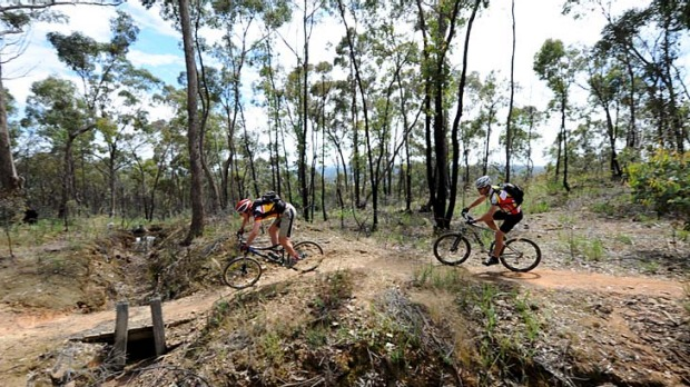 Lustre for life ... the revamped route, opened in May, appeals to both hikers and bikers.
