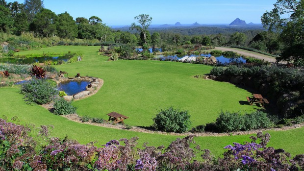 MALENY BOTANIC GARDENS & BIRD WORLD, QLD: Frank Shipp is a former engineer from South Africa with a thing for big ...