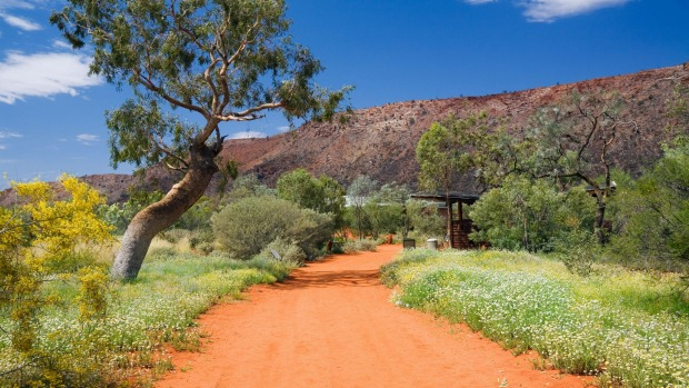 ALICE SPRINGS DESERT PARK, NT: Head to Australia's Red Centre to learn what native flora and fauna species thrive in ...