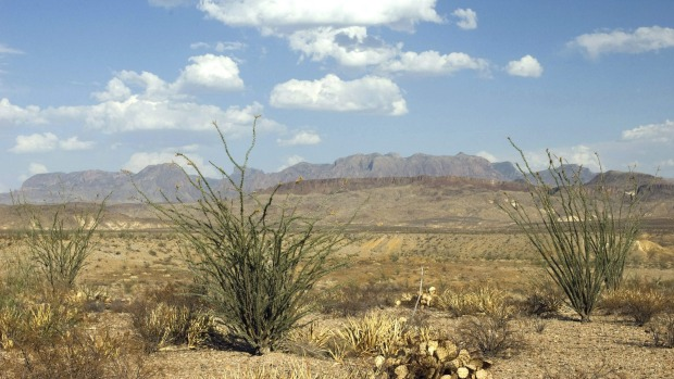 CHIHUAHUA, MEXICO AND THE US  This is possibly the desert we're all the most familiar with since so many  TV series and ...