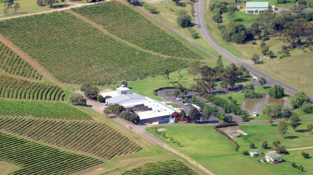 Different tastes ... a view of the Hunter Valley from a helicopter.
