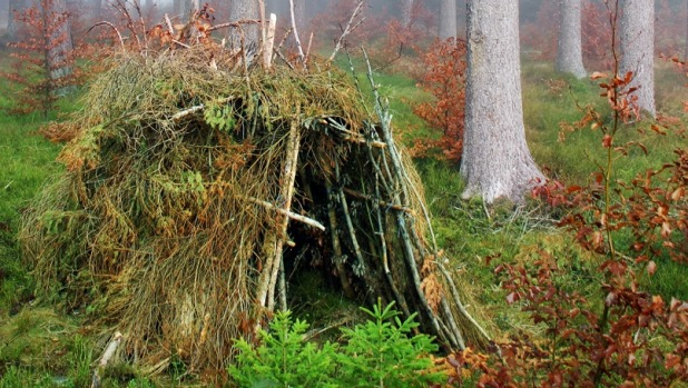 Home sweet home: Some members of the party learned to make a palace from the bracken.