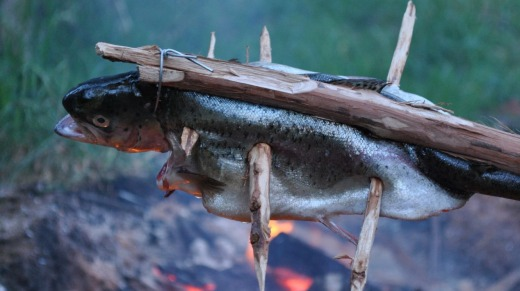 Fish ready for the fire: Nature provides everything we need.