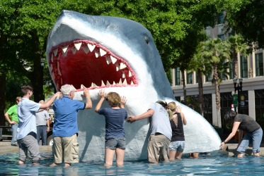 A great white shark sculpture is placed in the fountain in Hemming Park, in Jacksonville, Florida. The enlivened spaces class at the University of North Florida and art activist Wayne Wood teamed up to create the shark for the One Spark crowd sourcing festival.