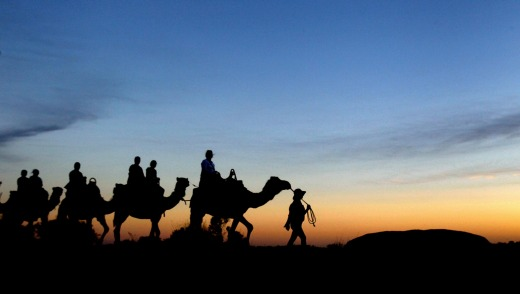 Uluru Camel Tours is a relaxed way to see the desert.