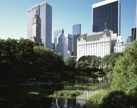 The Plaza in New York stands proud and stately among the skyscrapers.