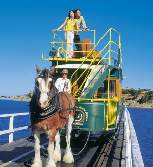 Victor Harbor, SA: Adelaidians are spoilt for choice when it comes to good getaway spots less than two hours from the ...