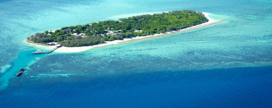 A laidback escape for nature lovers: Heron Island.