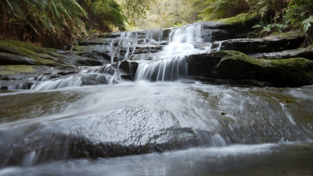 Blue Mountains Walkabout: This is a tour like no other – confronting, challenging, life-changing. Evan Yanna Muru ...
