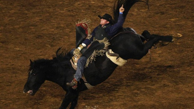 Wild ride ... rodeos make for an exciting night out.
