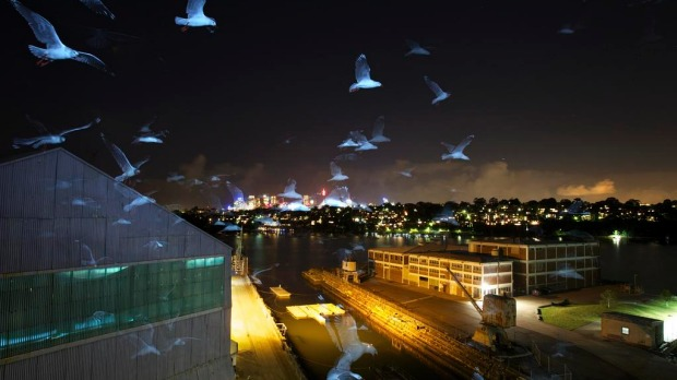 A flock of seagulls over the dockyard.