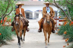 Leaving the coral, Cabalgatas La Sierra, horse 