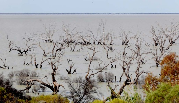 Menindee Lakes near Broken Hill.