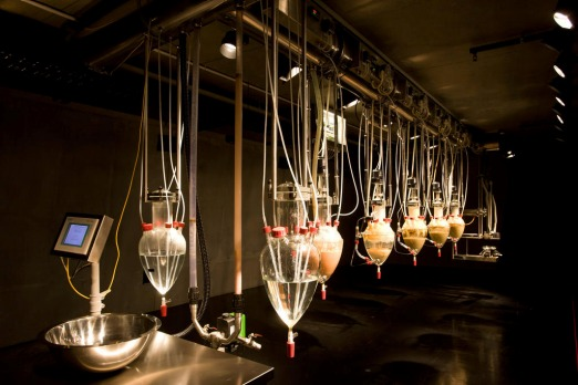 'Cloaca Professional' by Wim Delvoye is a grotesque machine that farts, craps and stinks. 