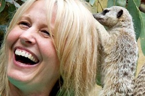 Wild things ... meerkats search for worms in visitors' hair.