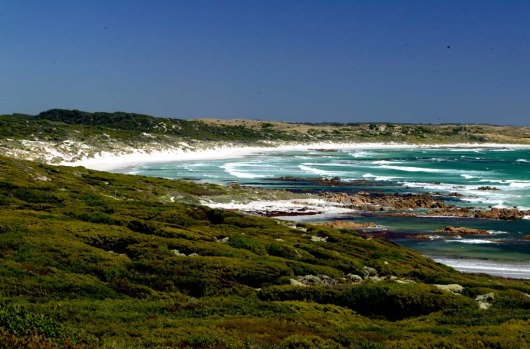 King Island, Tasmania. This small island off the north of Tasmania produces some of the best brie and soft cheeses in ...