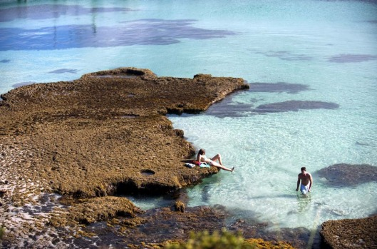 Kangaroo Island, South Australia. KI is located 45 minutes by ferry from Cape Jervis in SA and is home to abundant ...
