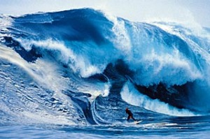 Andy Campbell at Shipstern Bluff.