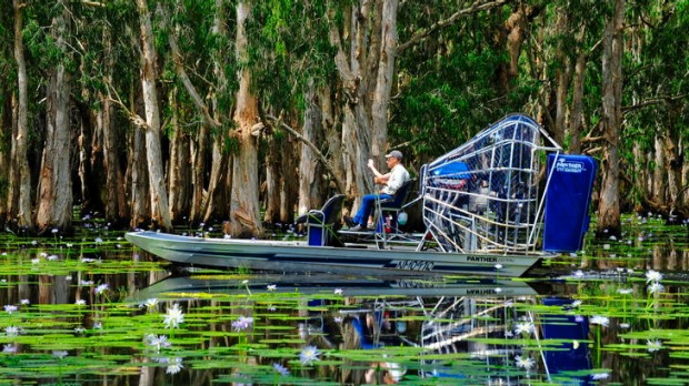 Airboating on Mary River.
