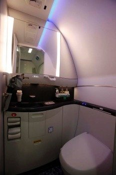 The washroom of a Boeing 787 Dreamliner is lit up with LED lighting.