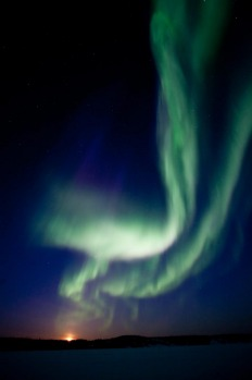The largest solar storm in five years sent a huge wave of radiation into earth's atmosphere creating a brilliant show of ...
