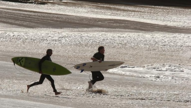 Surfers head out through the breakwaters at Bells Beach.