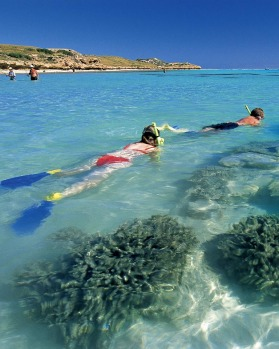 Ningaloo Reef, near Coral Bay.
