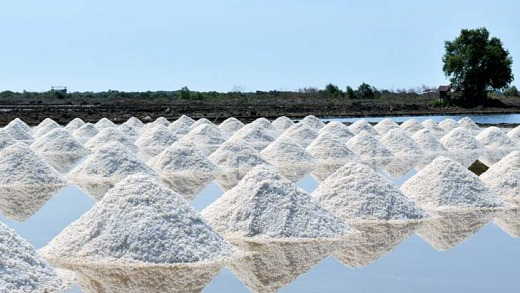 A salt farm in Samut Sakhon.