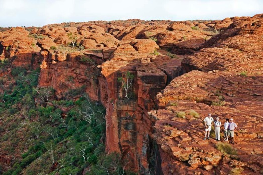 Peer into Kings Canyon in the Red Centre, Northern Territory.