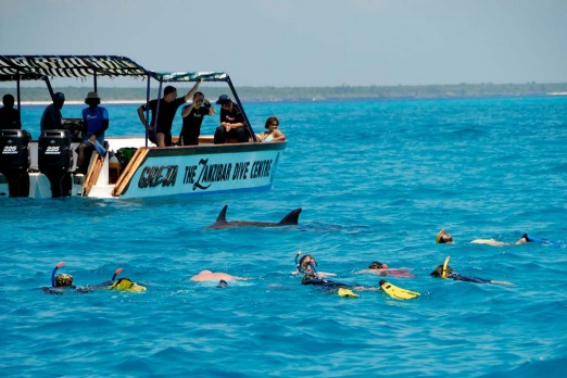 Diving with dolphins at Mnemba Atoll, Zanzibar.