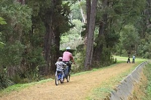 Cycling in Warburton, VIC