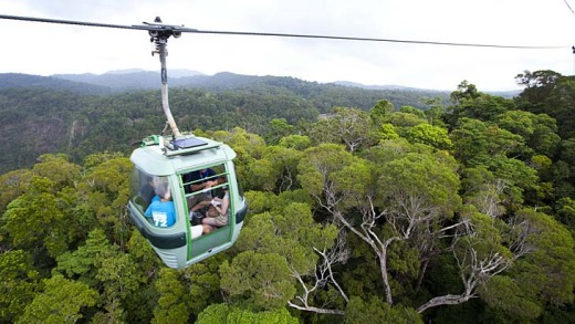 he SkyRail Rainforest Cableway offers a bird's eye view of the spectacular rainforest.