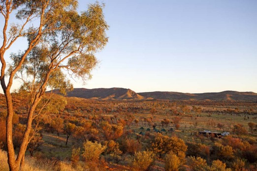 Amber light... a dawn view over Simpsons Gap.