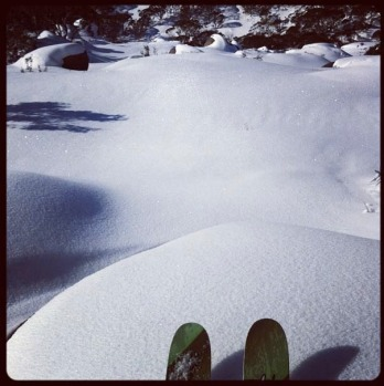 Perisher freshies, by @bentsquare.
