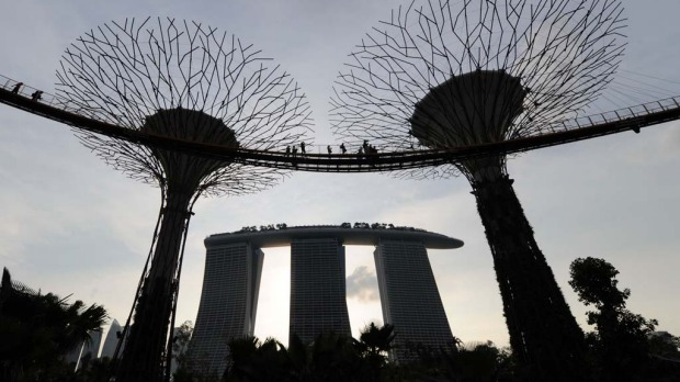 Visitors meander on the skyway walk linking across the towering Supertrees Grove in the Garden by the Bay in Singapore.