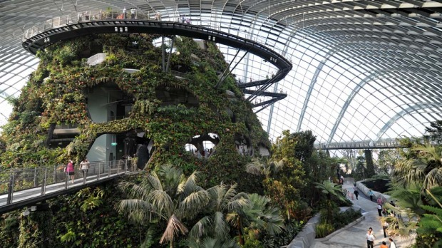 Visitors walk inside the cool conservatory dome at the Garden by the Bay in Singapore.