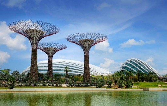 The Gardens by the Bay features an imposing canopy of 18 steel Supertrees that range from 25 metres to 50 metres high, ...