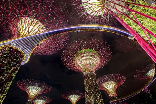 The Supertree Grove illuminated at Gardens by the Bay's Light and Sound show. The free nightly light and sound display ...