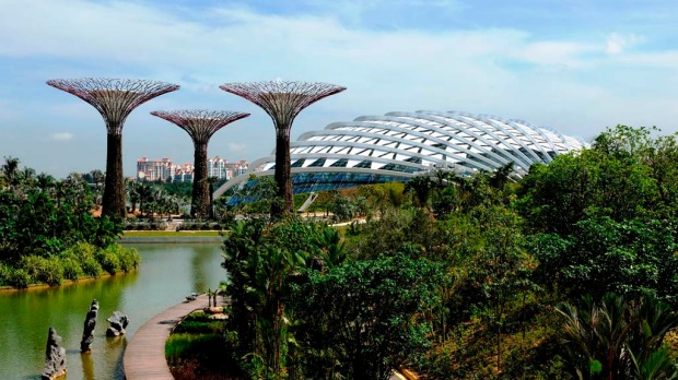 The Gardens by the Bay features an imposing canopy of 18 steel Supertrees that range from 25 metres to 50 metres high, two glass conservatories popping out from the foliage like a pair of giant mechanical turtles, the 22-metre-high aerial walkway weaving through the Supertrees and 700,000 plants.